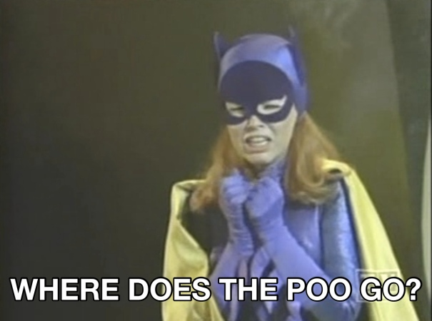 A picture of Batgirl crying with the caption: where does the poo go?